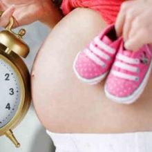 Отпуск по беременности и родам (БиР)