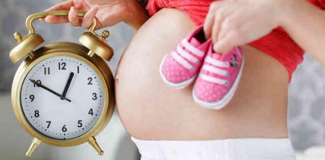 Предоставление отпуск по беременности и родам